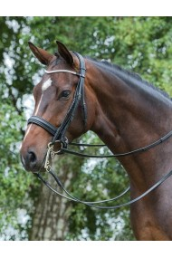 Mountain Horse Ajax Double Bridle