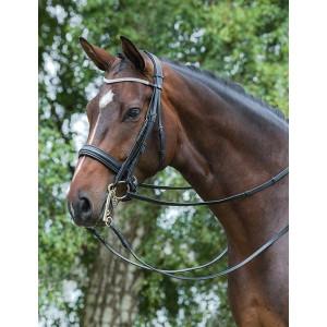 Mountain Horse Ajax Double Bridle