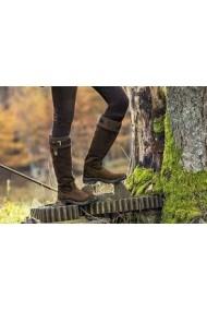 Mountain Horse Forest Highlander