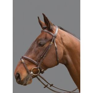 Mountain Horse Cyrano Bridle