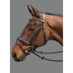Mountain Horse Argus Bridle