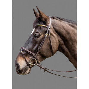 Mountain Horse Goldwing Bridle