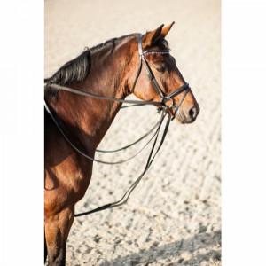 HorseGuard Gramantygel i...